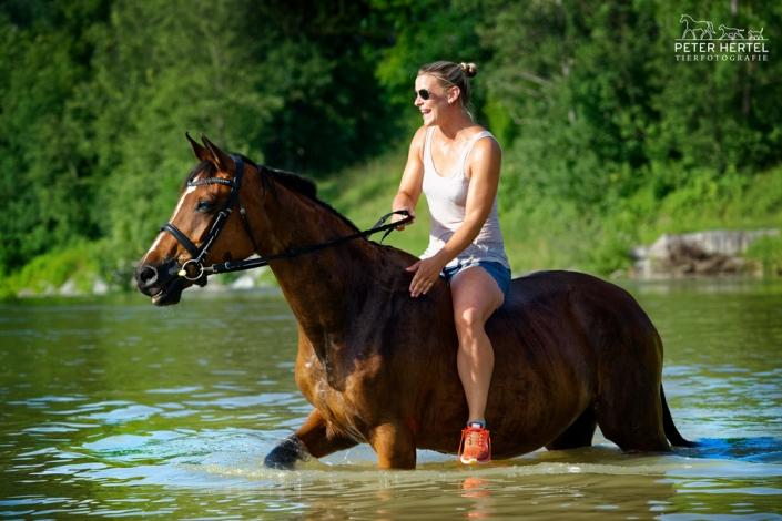 pferd-outdoor-hannoveraner-reiterin-wasser