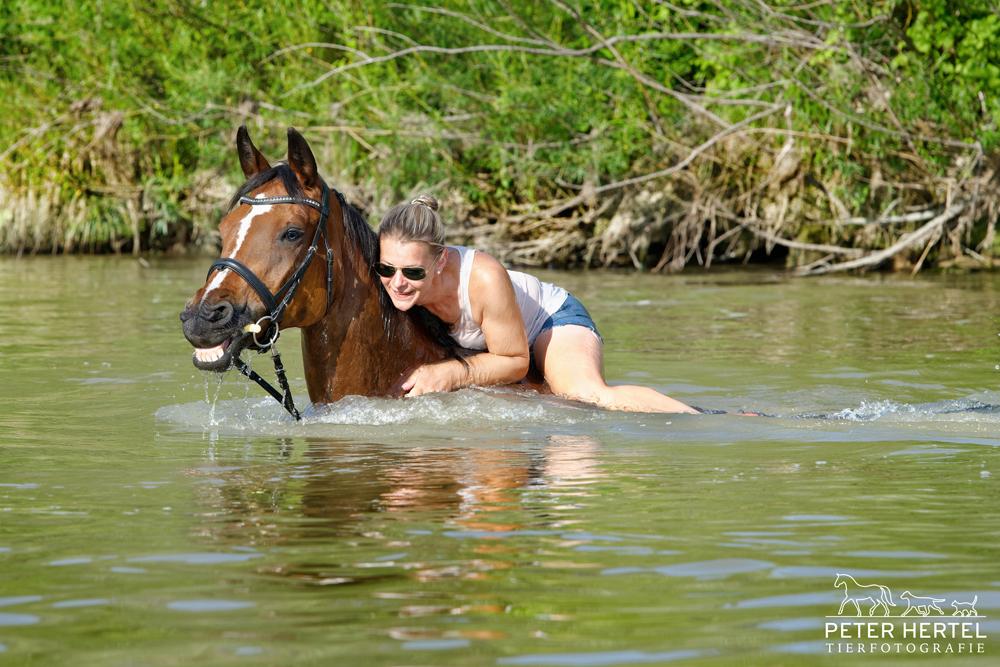 pferdefotografie-in-der-natur-pferdemensch-hannoveraner-wasser