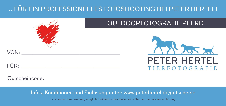 pferd-outdoor-gutschein-rueckseite