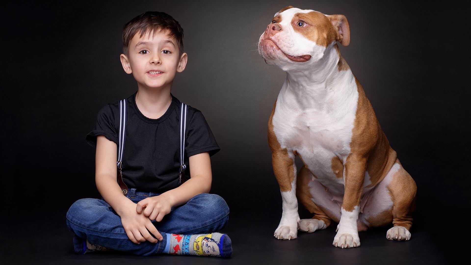 hund-studio-bulldog-kind