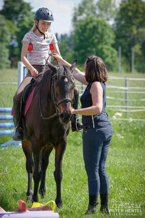 pferd-outdoor-fraenklinbaelle5