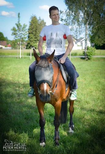 pferd-oudoor-fotograf-crazy-fraenklinbaelle